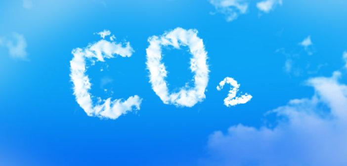 Den CO2 Ausstoß reduzieren und Cashback erhalten