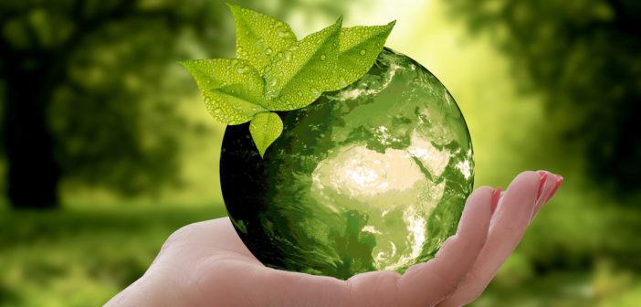 Studie: Produkttransparenz fördert Nachhaltigkeit